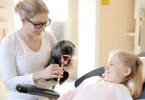 Kinderzahnheilkunde in Allershausen